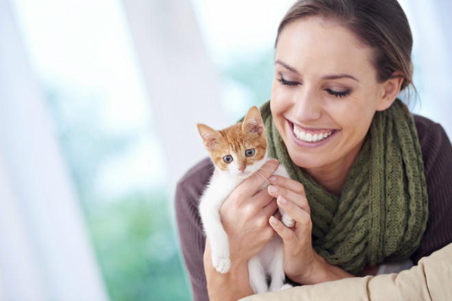 Женщина гладит кота фото
