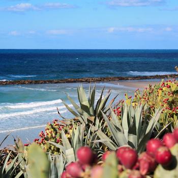 Чистые и обустроенные пляжи делают Израиль очень привлекательным туристическим направлением.