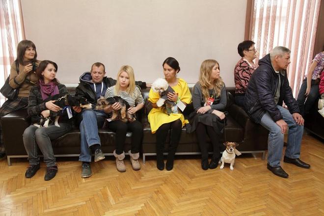 Кастинг собаки для Стоянова