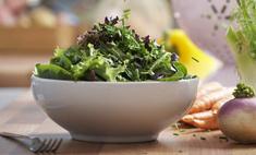Летнее меню. Рецепты вкусных блюд от рязанских поваров и не только