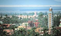Марокко - страна коз-древолазов