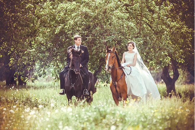 катание на лошадях в Брянске