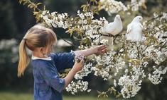 Милота дня: голубь подарил цветок своей возлюбленной