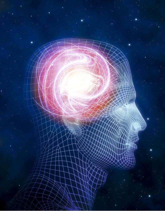 витамины для сосудов мозга