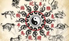 Восточный гороскоп на 2016 год от Мохсена Норузи