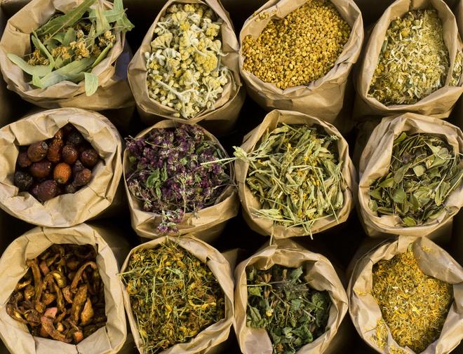 лекарственные травы от бронхита