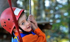 Куда поехать в выходные: веревочный парк и храм Исиды в Репино