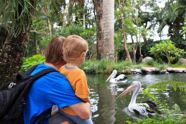 Мастер класс для детей москва. аквапарки москва