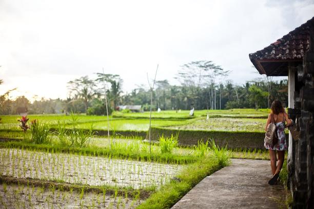 Бали: куда поехать на острове