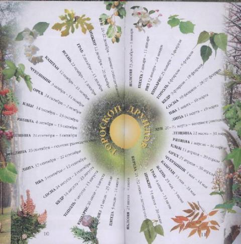 гороскоп друидов на 2015 деревья