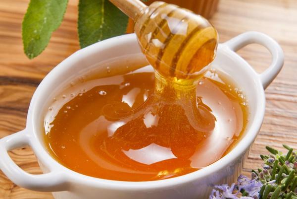 Бортевой мед: свойства