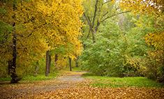 Планируем выходные: осенние прогулки по городу и не только