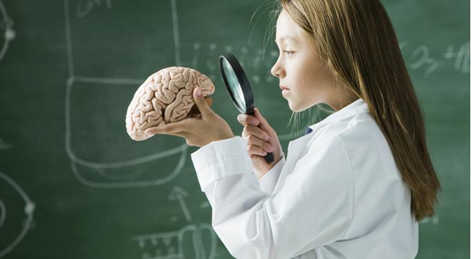 Татьяна Черниговская: «Объем памяти у мозга гигантский»