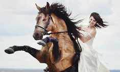 Девушки на коне: 14 бесстрашных всадниц Курска
