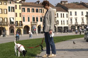 Падуя - город ученых мужей, студентов и... владельцев собак