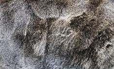 Особенности и модели шуб из козлика