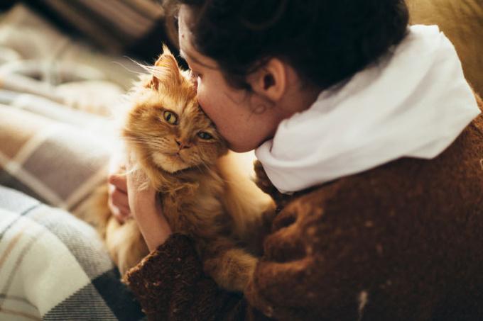 Женщина с котом