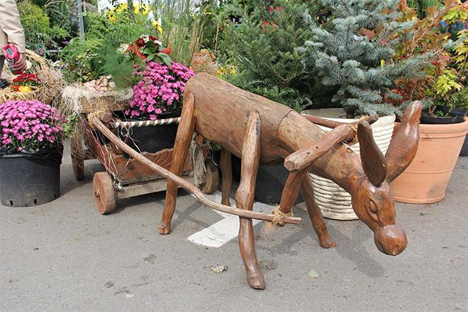 Выставка «Дачный сезон» в Ростове, куда пойти в Ростове, афиша Ростова, куда пойти с ребенком