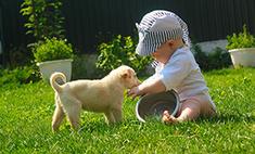 Милота дня: белые щенки снимаются в кино