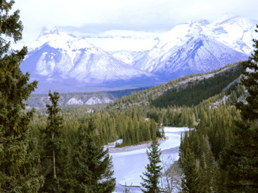 Канада, лес, туризм, телешоу