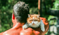 Огонь! Пожарные устроили фотосессию с котиками и щенками