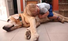 15 фактов, которые сподвигнут вас купить ребенку собаку