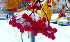 Заснеженный Киров: первые фото зимы 2014–15