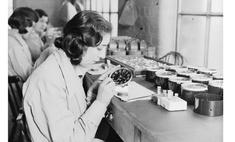 «Радиевые девушки»: светящиеся часы, радиация и смерть