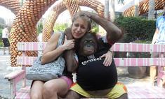 Ждем 2016-й: фото красноярцев с обезьянкой