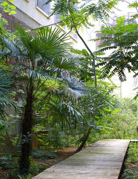 Садовые дорожки: практичные советы | галерея [3] фото [9]