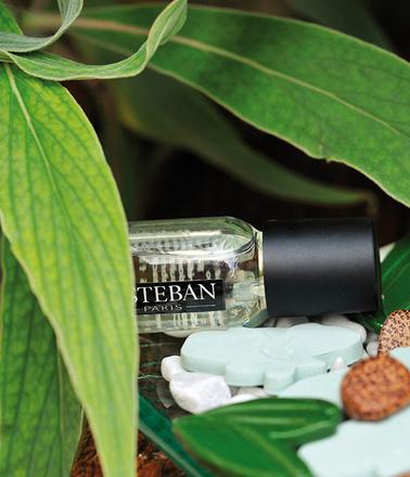 Новые ароматы, аромат любви, аромамасло, цветочные ароматы, цитрусовые ароматы, пряный аромат, свежие ароматы, сладкие ароматы
