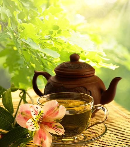 зеленый чай, профилактика рака
