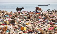Голландцы построят обитаемый остров из пластиковых бутылок