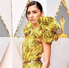 Актриса появилась на «Оскаре-2017» без трусов