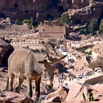 Наибольшее число туристов в Иордании привлекает Петра, главный город сыновей Исава.