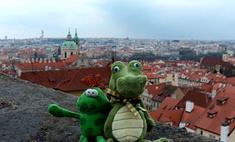 Создано первое в мире агентство путешествий для игрушек