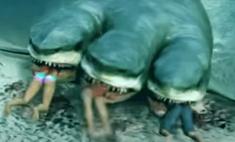 выглядела пандемия коронавируса вирус акулой видео
