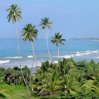 На тропический остров Шри-Ланка (Цейлон) в Индийском океане можно слетать меньше, чем за 1000 долларов.