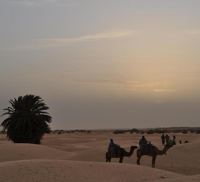 отдых, прямой вылет, заграница, пляжный отдых, Тунис