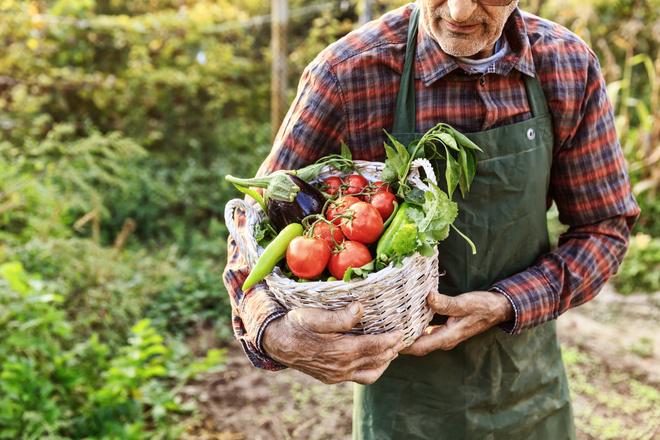 Какие продукты полезны во время диеты: список