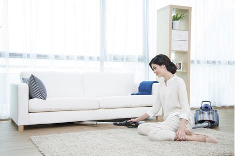 Компания Electrolux представила новинку – пылесос Ultraflex | галерея [1] фото [1]