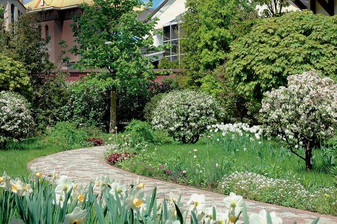 Вдоль дорожки высажены луковичные и почвопокровные растения.