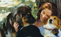 Джулия Робертс приютила бездомную собаку