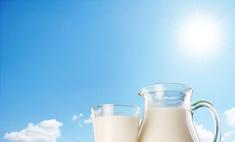 Проверяем жирность молока в домашних условиях