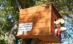 Смехотерапия в Томске: 7 поводов улыбнуться