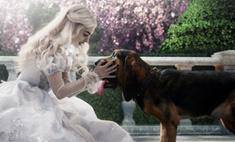 «Алиса в Стране чудес» уже стала самым кассовым 3D фильмом