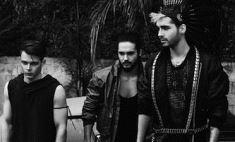В Перми для Tokio Hotel испекут торт с фигурками питомцев группы