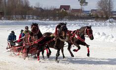 По коням! Скачки в Усть-Качке