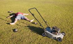 Смешная переписка: парень пытается обменять газонокосилку на автомобиль