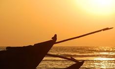 Туристический сезон в Гоа оказался под угрозой